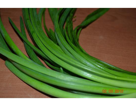 Здоровые перья лука