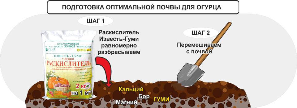 Подготовка оптимальной почвы для огурца