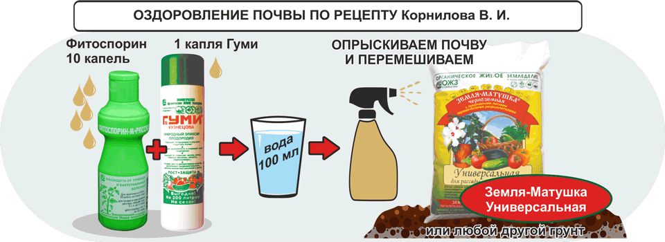 Оздоровление почвы по рецепту Корнилова В.И.